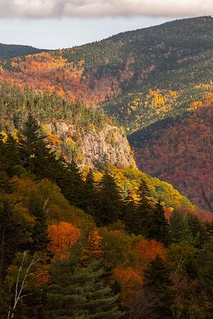 new hampshire fall forest colors