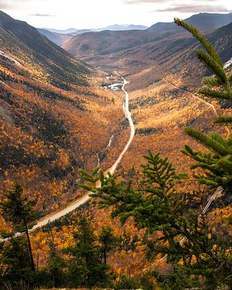 white mountain national forest beautiful fall colors